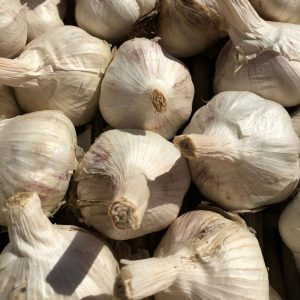 Freshwater Creek Organic Garlic 2.5kg